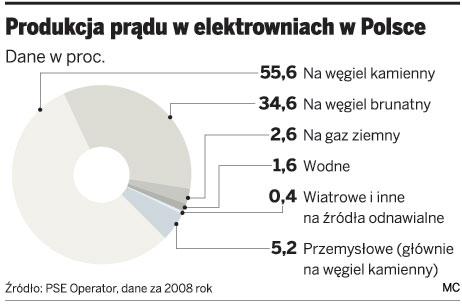 Produkcja prądu w elektrowniach w Polsce