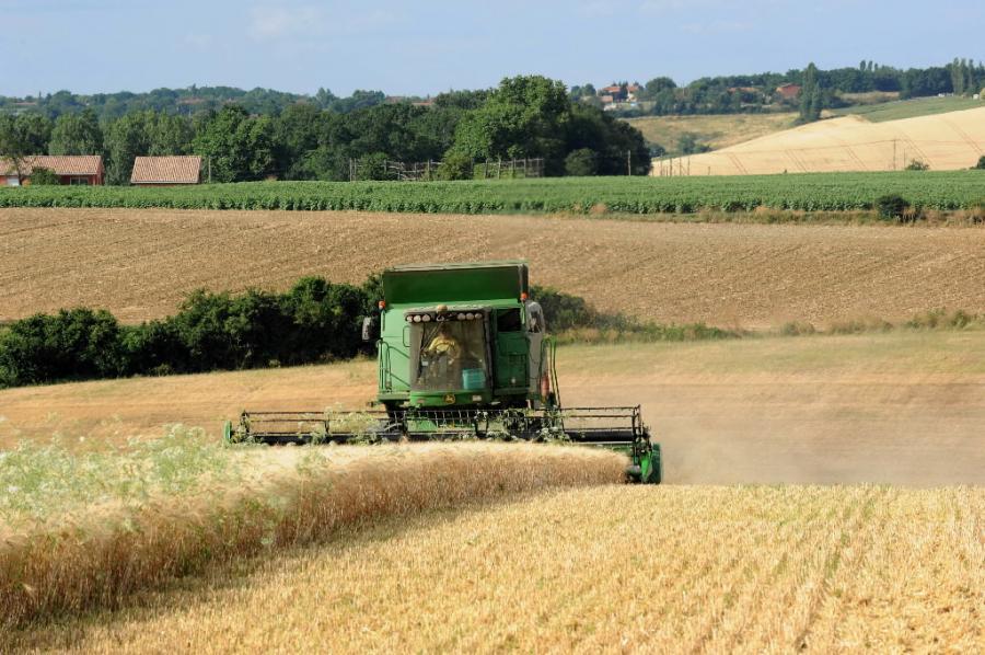 Zbiory pszenicy we Francji. Fot. Bloomberg
