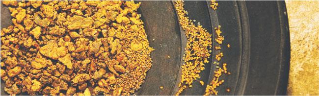 Wydobycie złota Fot. Bloomberg