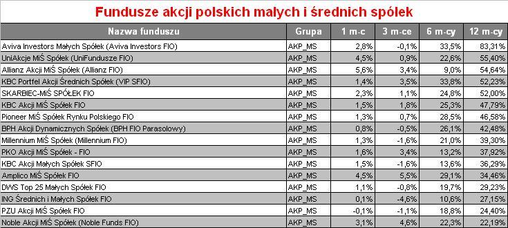 Fundusze akcji polskich małych i średnich spółek w 2009 r. - Expander