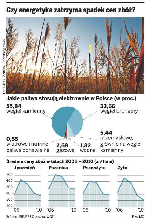 Czy energetyka zatrzyma spadek cen zbóż?