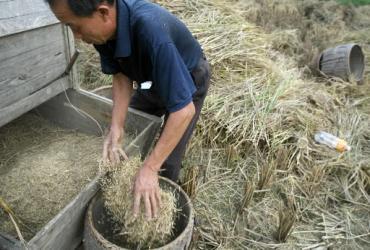 Chiński rolnik może byc ratunkiem dla globalnej gospodarki. Fot. Bloomberg