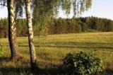 Wykup gruntu znacznie tańszy niż użytkowanie wieczyste