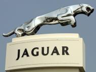 Jaguary i Land Rovery mają się lepiej sprzedawać. Marvipol liczy na wzrost sprzedaży do ponad 2300 aut