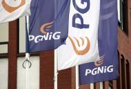 <strong>Dywidenda</strong> PGNiG: akcjonariusze spółki zdecydowali o wypłacie 0,15 zł <strong>dywidendy</strong> na akcję za <strong>2013</strong> r.