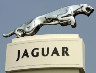 Jaguar MAŁY