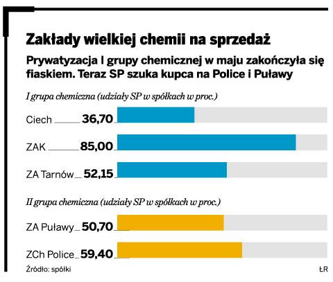 Zakłady wielkiej chemii na sprzedaż