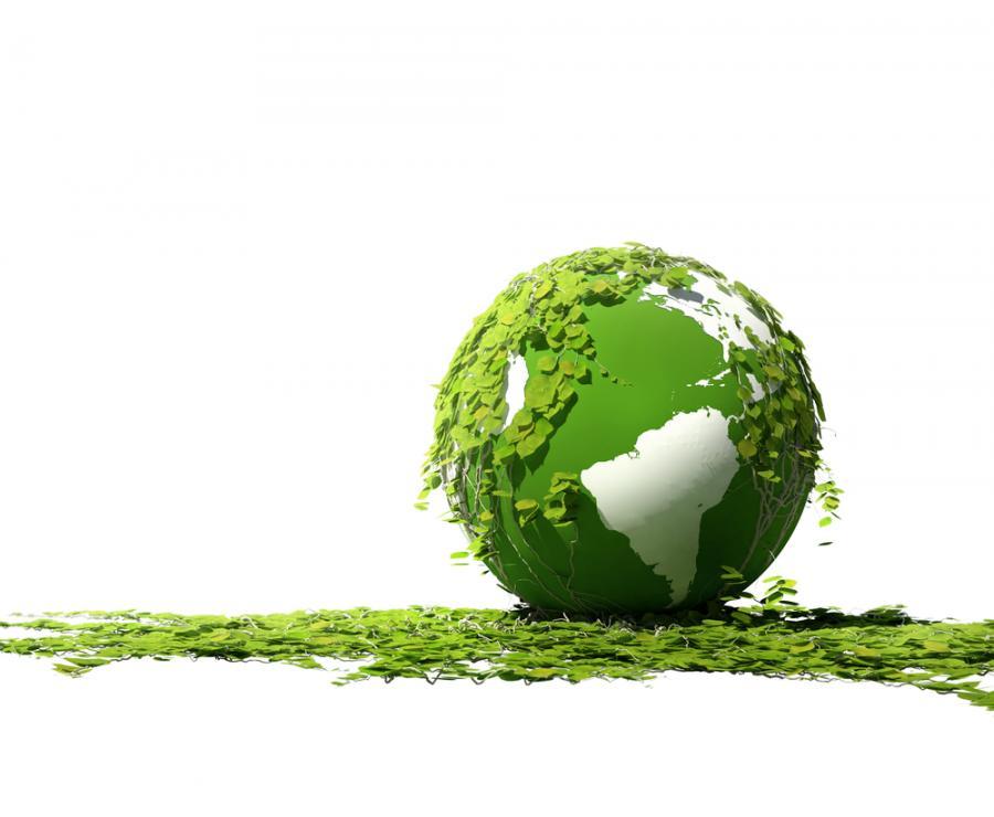 Ministerstwo Środowiska promuje polskie zielone technologie na świecie. Urzędnicy szukają zleceń dla firm w Azji i Europie Wschodniej. Podpisano już pierwszy kontrakt wart 5 mln dolarów. Nabór kolejnych chętnych w styczniu Fot. Shutterstock