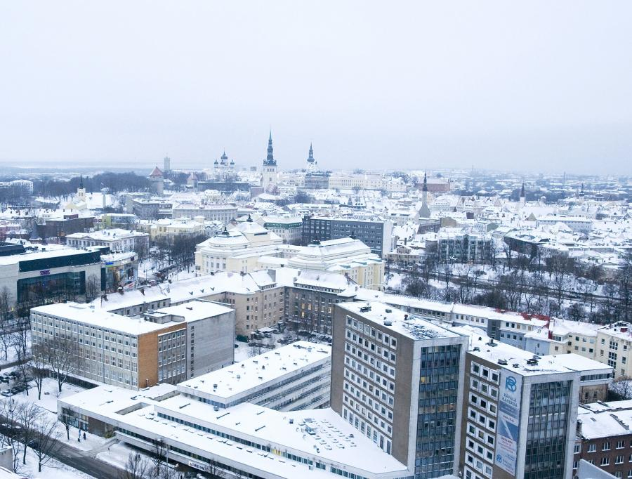 Pomimo nienajlepszego roku dla strefy euro od 1 stycznia jej 17. członkiem zostanie Estonia. Gospodarka Estonii będzie stanowiła zaledwie jedną dziesiątą procenta wartej 12,5 biliona dol. gospodarki krajów eurolandu. Znaczna część Estończyków uważa jednak wspólną walutę za dopełnienie integracji z Zachodem.