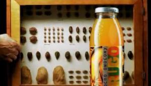 Napój Frugo powróci na rynek dzięki firmie FoodCare. Fot. reklama telewizyjna Frugo
