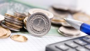 pieniądze (fot. shutterstock.com)