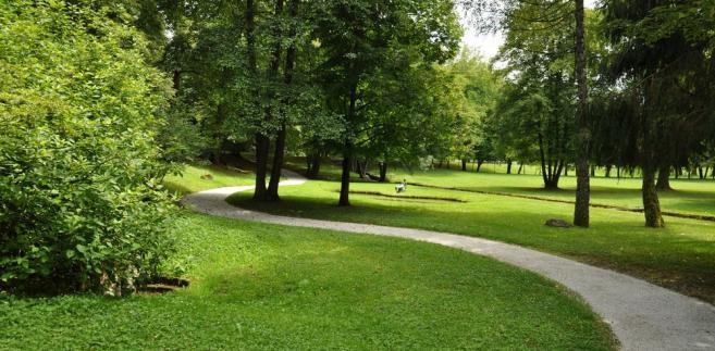 Park, uzdrowisko
