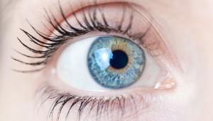 Ludzkie oko (Fot. ShutterStock)