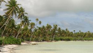 Plaża na jednej z wysp archipelagu Kiribati.