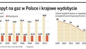 Popyt na gaz w Polsce i krajowe wydobycie
