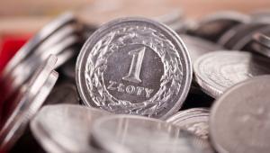 Złotówka, monety jednozłotowe