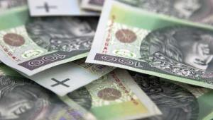 Złoty w trakcie poniedziałkowej sesji osłabia się, głównie za sprawą nieustających obaw o kondycję fiskalną peryferyjnych członków eurolandu. Impuls do wzrostu kursu euro-złotego dało obniżenie ratingu Węgier. Fot. Shutterstock