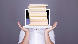 lisko 9 na 10 badanych internautów poszukiwało informacji na stronach internetowych urzędów w ciągu ostatnich 12 miesięcy. Fot. Shutterstock