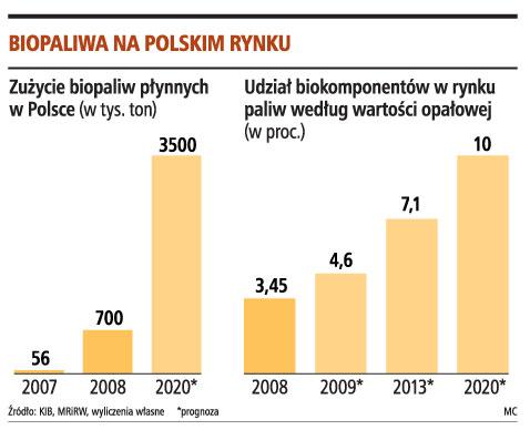 bioetanol w polsce