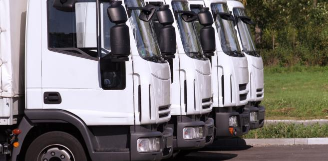 ciężarówki, transport