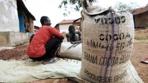 Dotąd głownym bogactwem Ghany były plantacje kakao, od przyszłego roku będzie to ropa naftowa i indeks lokalnej giełdy wzrośnie.