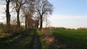 Majowy długi weekend zbliża się wielkimi krokami, jednak jak co roku, wynajęcie w ostatniej chwili domku bądź lokalu na wiosenną majówkę graniczy z cudem.
