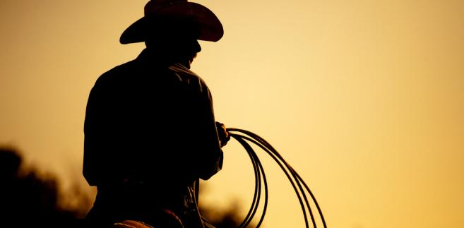 Kowboj, fot. Sascha Burkard