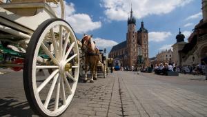 Kraków, fot. Wiktor Bubniak