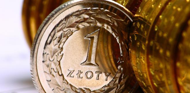 Polski złoty, fot. mffoto