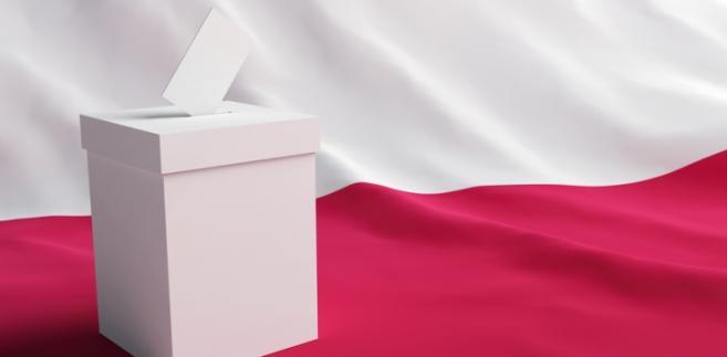 Urna do głosowania fot. shutterstock.com