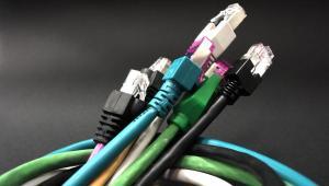 Kable sieciowe fot. sxc.hu