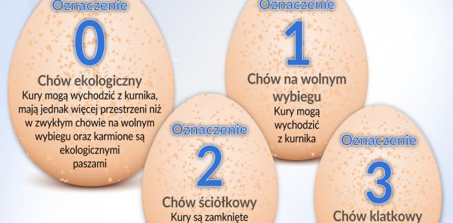 Jajka - rodzaje oznaczenie (graf. Obserwator Finansowy)