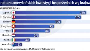 USA - struktura amerykańskich inwestycji bezposrednich wg krajów (graf. Obserwator Finansowy)