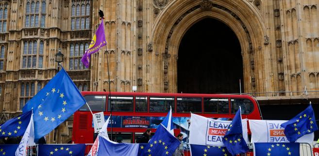Protesty pod brytyjskim parlamentem. Londyn, Wielka Brytania, 15.01.2019